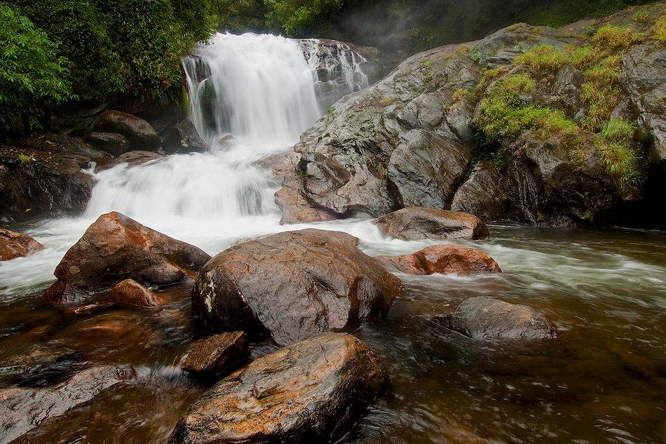 Stream in a Western Ghats rainforest.jpg