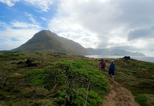 View from Kaena point.jpg