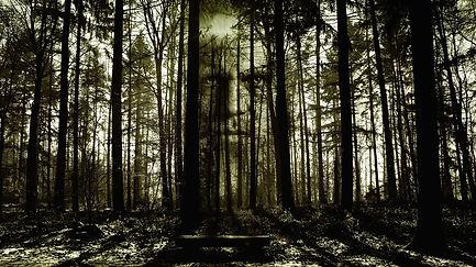 horror-2156302_1280.jpg