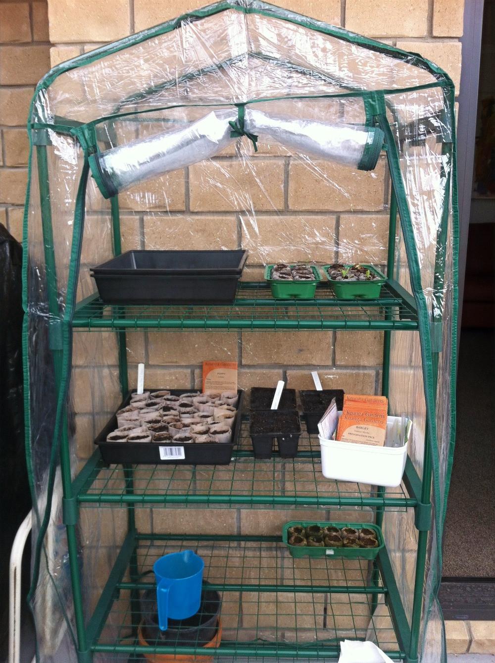 Small plastic seedling house www.lifeloveandlettuce.com
