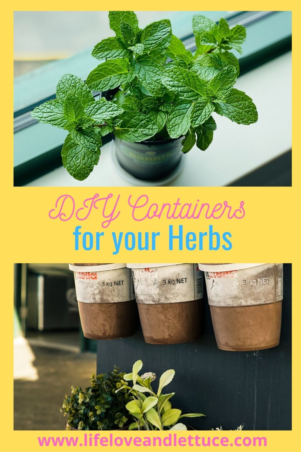 DIY containers for herbs www.lifeloveandlettuce.com