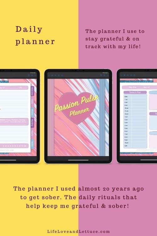 Pin for Planner on Pinterest www.lifeloveandlettuce.com