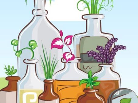 Herbs for Winter Wellness
