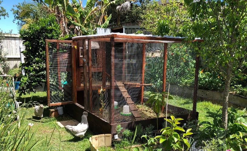 Chicken coop in back garden www.lifeloveandlettuce.com