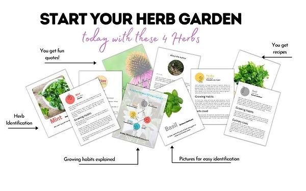 4 Herbs Hero Shot.jpg