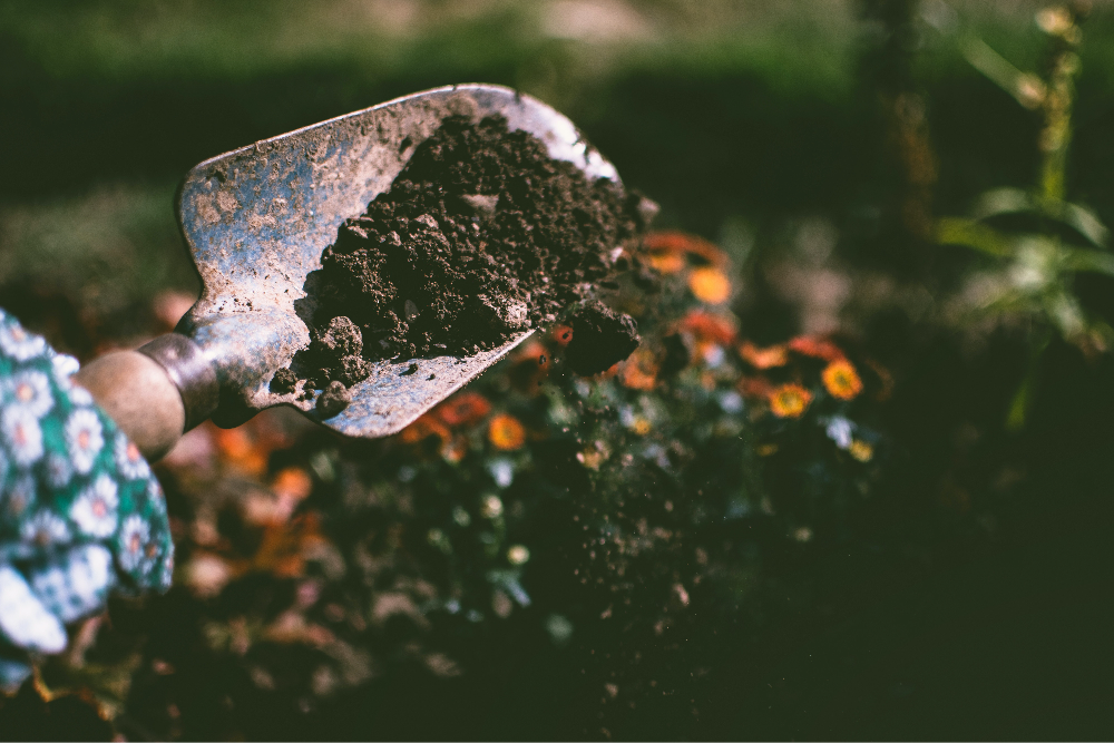 9 best tips for easy compost