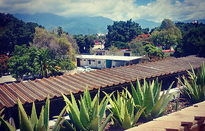 Oaxaca 4.jpg