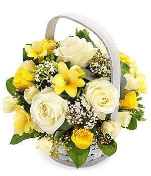 Shining Yellow & White