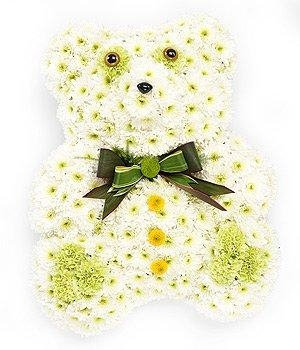 Teddy - Different colours available