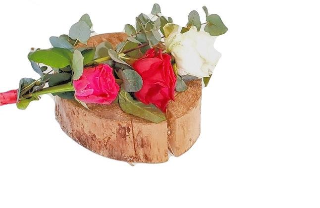 3 Rose&Foliage