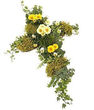 Yellow Planted Cross
