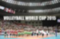 バレーボールワールドカップ.pdf.jpg
