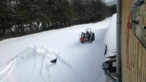 Le manège de la neige, tourbillon de flocons...
