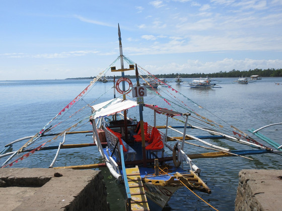 Borneo (Malaysia) and the Philippines on Palawan Island Puerto Princesa