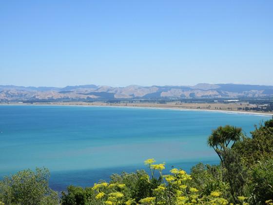 Gisborne, NZ Gizzy