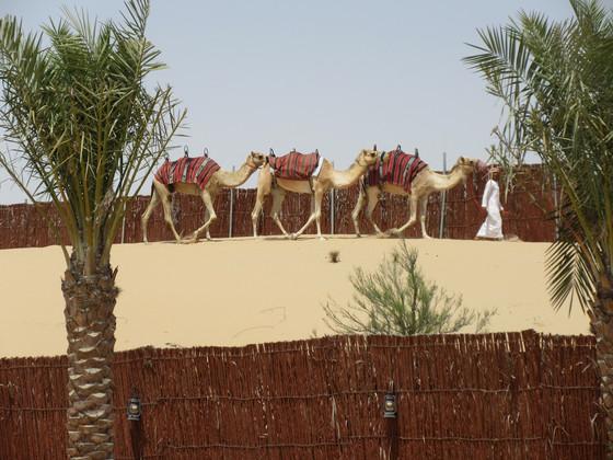 Abu Dhabi, UAE, Day One