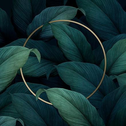 pdflowerset19b2-eye-02-k-tropical-leaves-l_1.jpeg