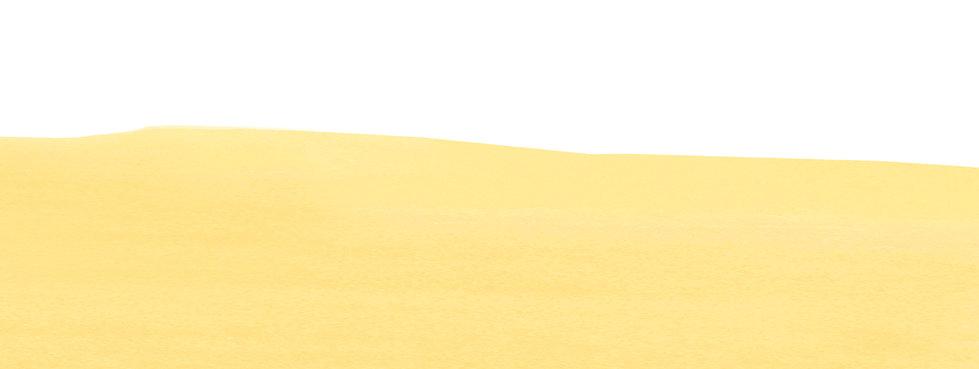 HADA_04 banner.jpg