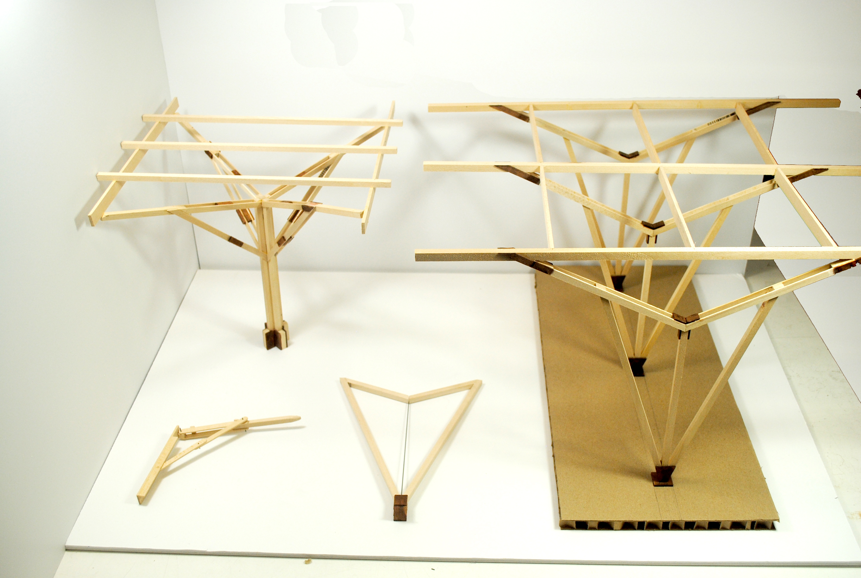 final structural study models