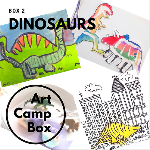 Dinosaur Camp Box