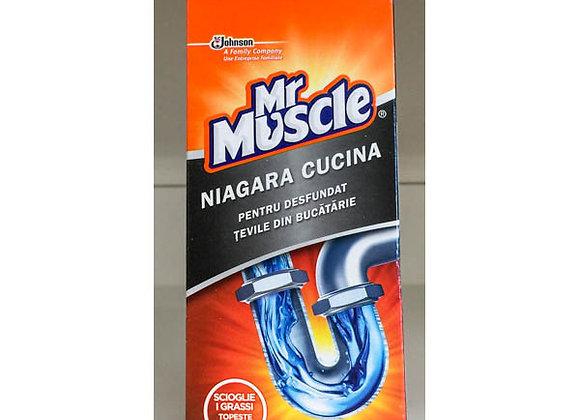 Mr. Muscolo Niagara