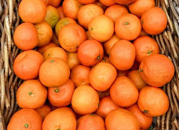 Clementine (Italia)