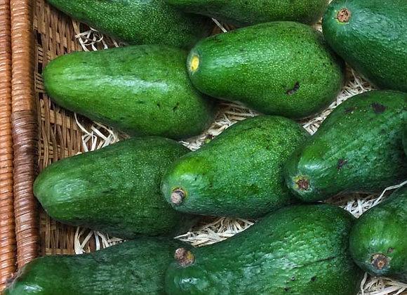 Avocado (Sud Africa)