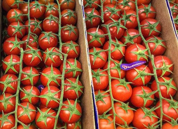 Pomodori Ciliegino (Italia)