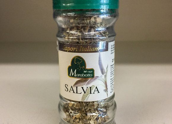 Salvia MARABOTTO