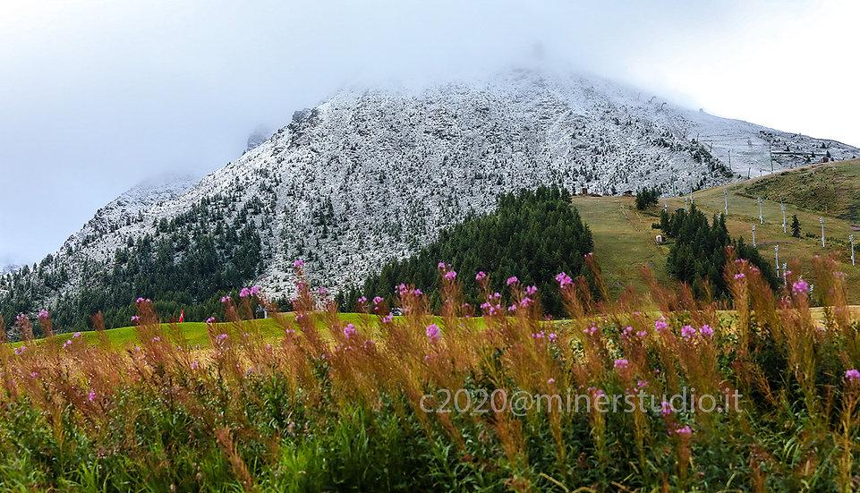 Neve d'agosto