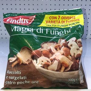 MAGIA DI FUNGHI FINDUS 300 GR