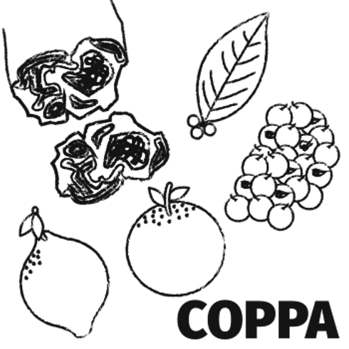 Orange, Pink Peppercorn & Bay Coppa (75g)