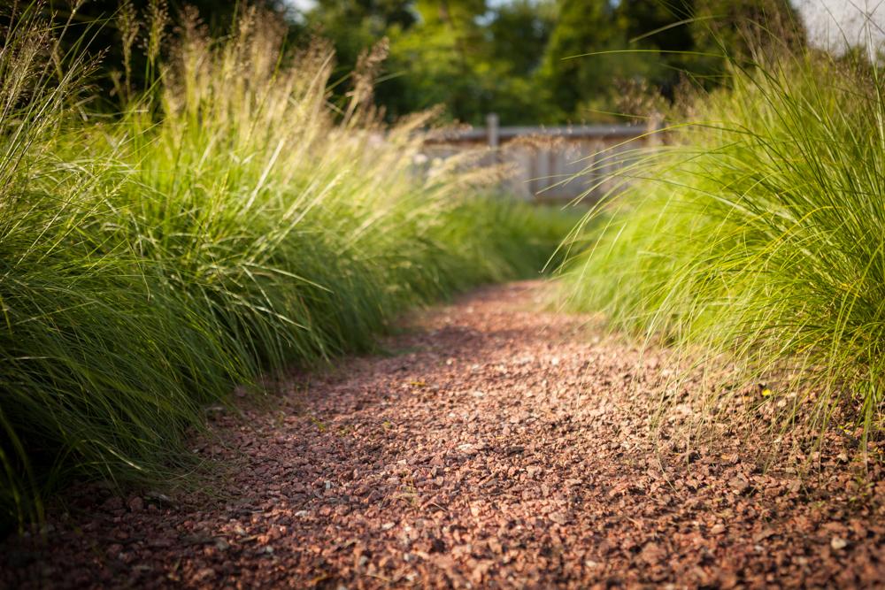 Landscape path Hinsdale