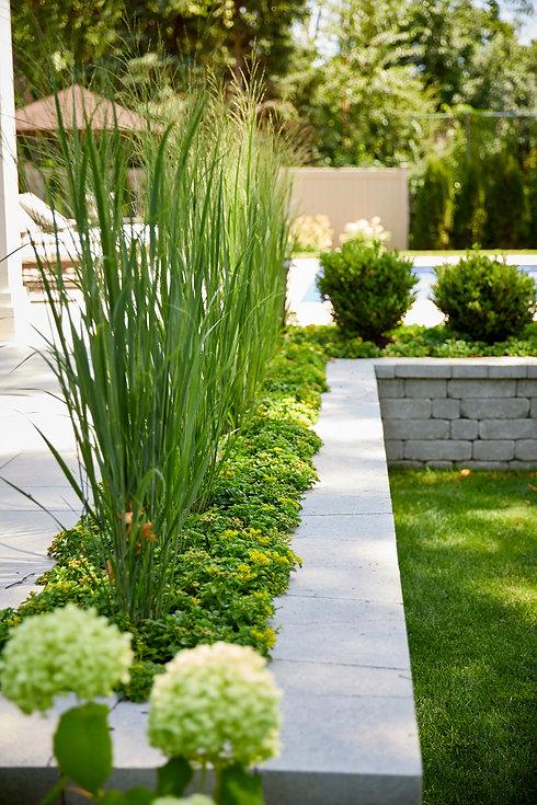 landscape-grasses-wheaton.jpg.jpg