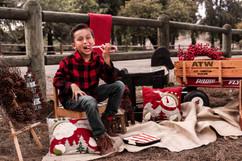 Holiday Mini 2018