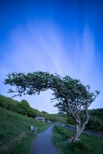 South West Coast Path - Brigitte