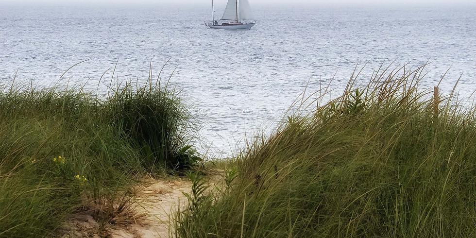 VAC Zoom Sketch of the Week - Sail Away