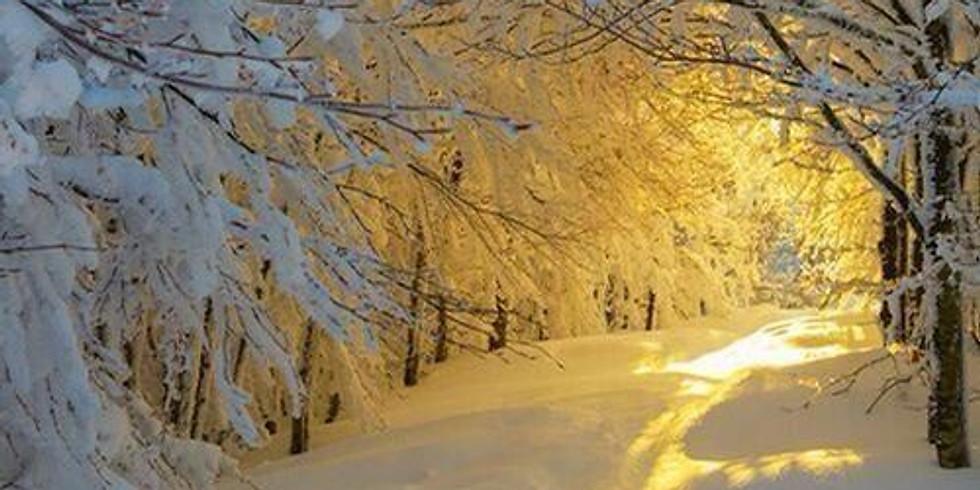 NPAC Zoom Pastel - Sun and Snow