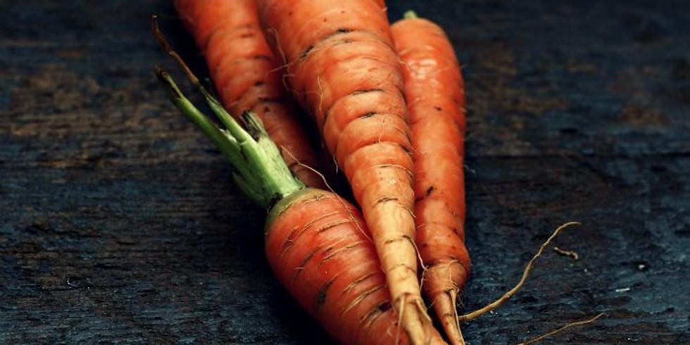 NPAC Hybrid Pastel - Carrots