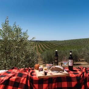 Šepet med vinogradi