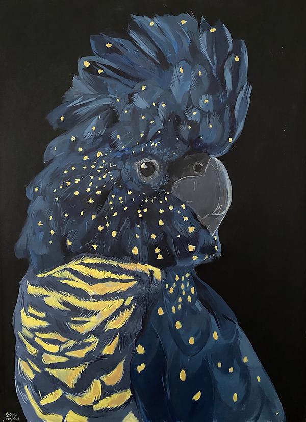 Cockatoo.png