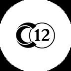 C12 brussels concert recording, audio recorder