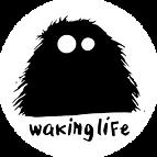 Waking life concert recording, audio recorder