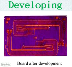 6 Development
