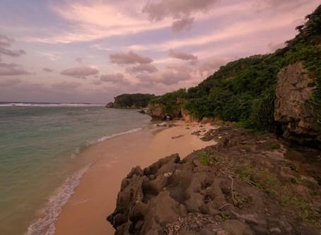 これから、沖永良部島へのご旅行や帰省、島旅をお考えの皆様へ。