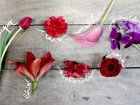 O antigo significado das flores