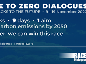 Join us at the Race to Zero Finance Day, Thursday, 19th November!