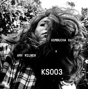 KS003.png