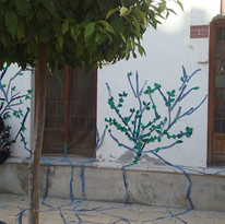 Árboles tejanos