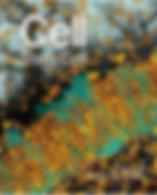 Screenshot 2019-12-17 at 15.36.52.png